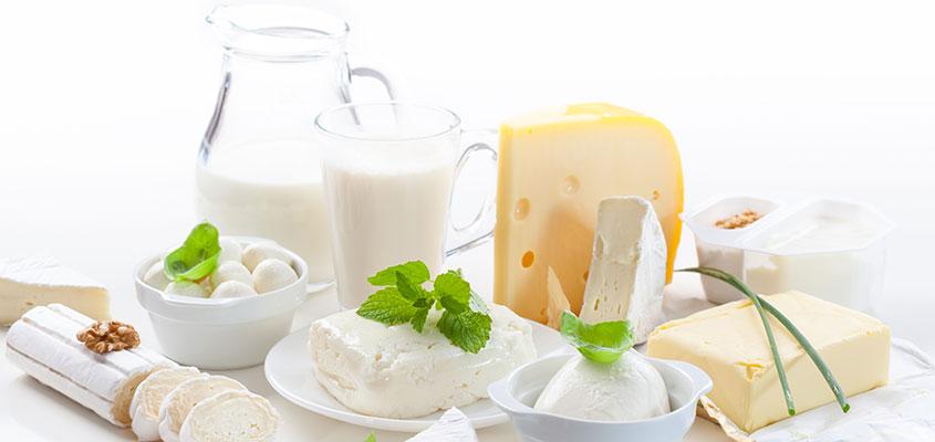 Milchlexikon in Kürze